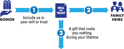 Gift from Your Will or Trust Diagram